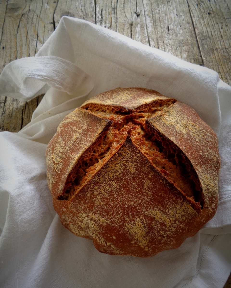 My tiny green kitchen's Sourdough